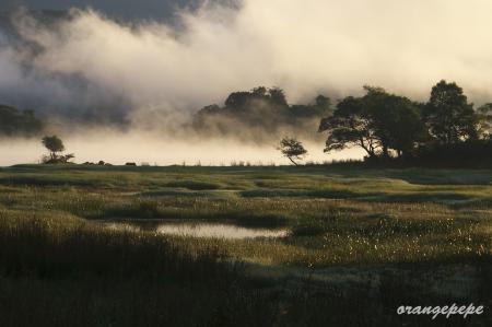 桧原湖の朝